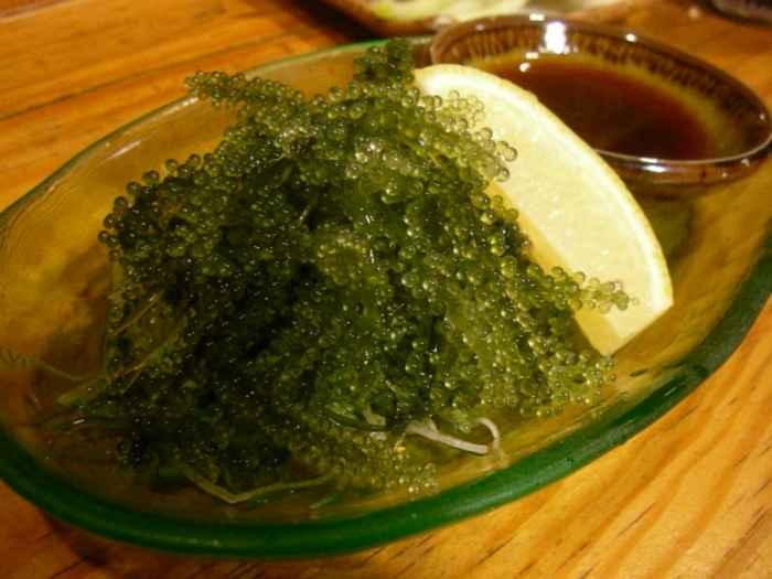 uvas de mar