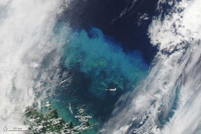 sedimentos Gran Barrera Coral, ciclón Yasí