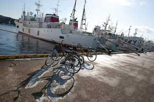 barcos palangreros de tiburón en el puerto de kesennuma, Japón
