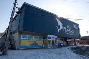museo del tiburón, Kesennuma, Japón