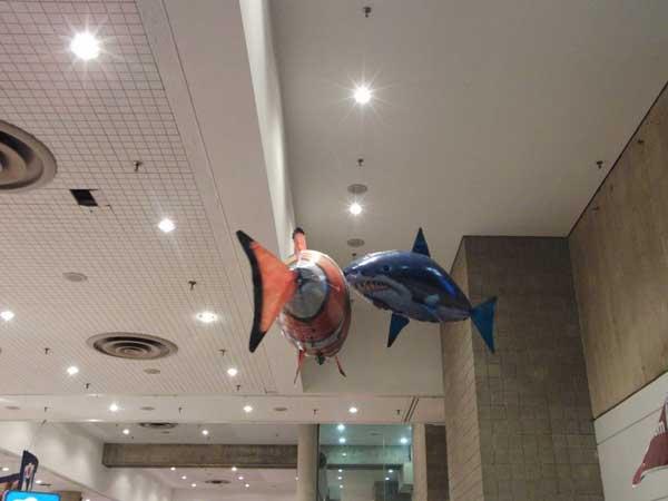 peces voladores de helio controlados a distancia