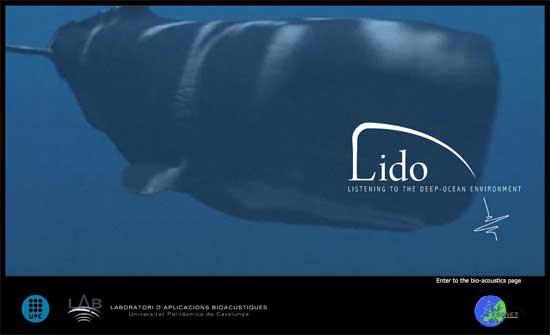 proyecto LIDO, portada página web