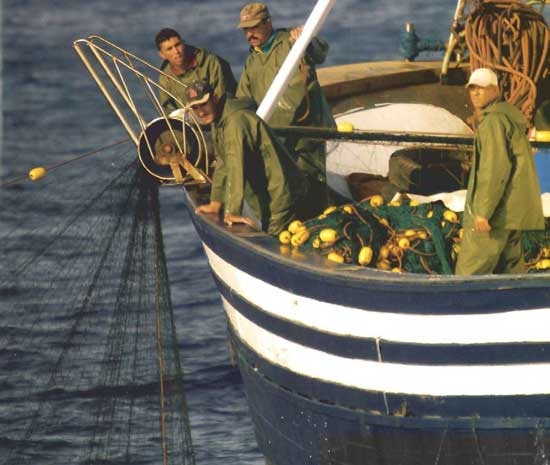 redes de deriva en la flota de Marruecos