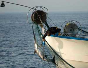 redes de deriva en pesquero de Marruecos