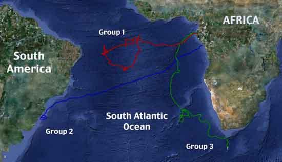 rutas migratorias tortugas laúd