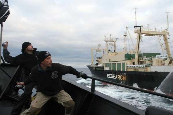 Sea Shepherd acosa a la flota ballenera de Japón en la Antártida