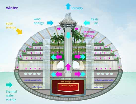 The Ark (El Arca) sección