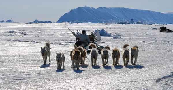 trineo tirado por perros de inuit en Groenlandia