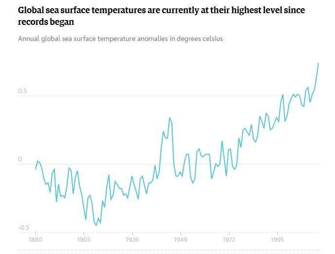aumeto de la temperatura del océano