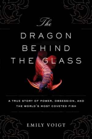 El dragón detrás del cristal de Emily Voigt
