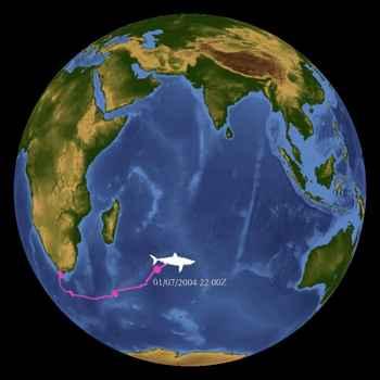 ruta seguida por el gran tiburón blanco durante su viaje