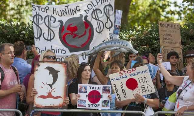 protestas de defensores de los delfines