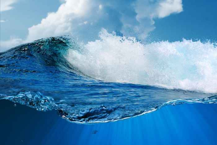 virus en el océano