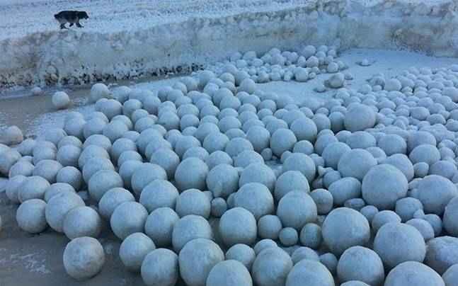 bolas de nieve en una playa de Siberia