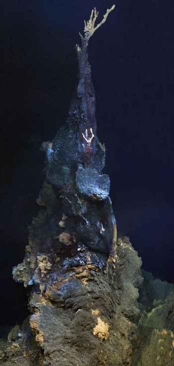 chimenea hidrotermal de alta temperatura