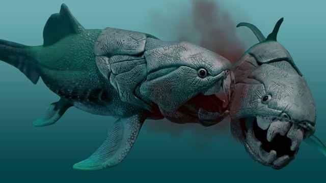 ataque de un Dunkleosteus a otro