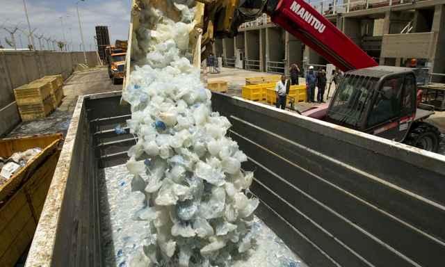 retirada de medusas de una central nuclear de Israel