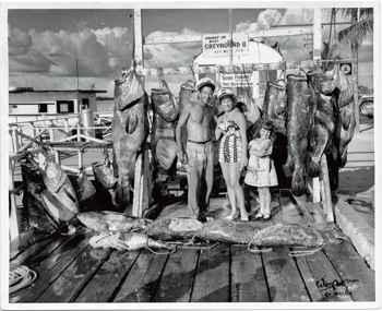 antigua pesca de mero goliat atlántico