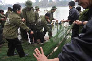 ayuda a la tortuga sagrada del lago Hoan Kiem, Vietnam