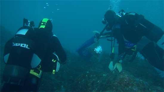 buzos en una investigación de especies marinas en los fondos del Estrecho