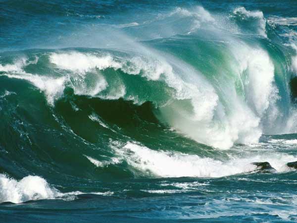gran ola en la costa de Nueva Zelanda