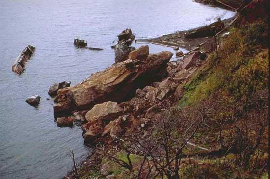 consecuencias del terremoto y tsunami en la isla de Shikotan en 1994
