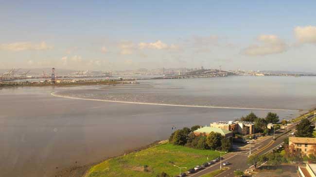 tsunami Japón 11 de marzo 2011, llega costa de California