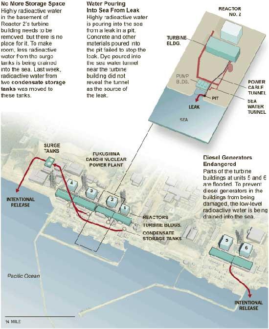 fuga de agua radiactiva al mar en Fukushima, Japón