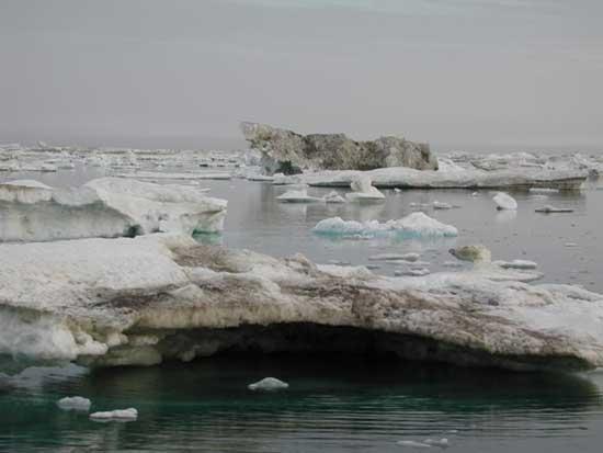 hielo en le mar del ártico