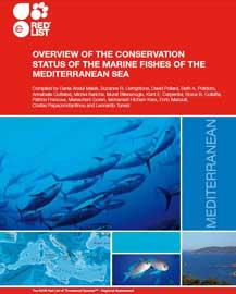 informe IUCN peces del Mediterráneo