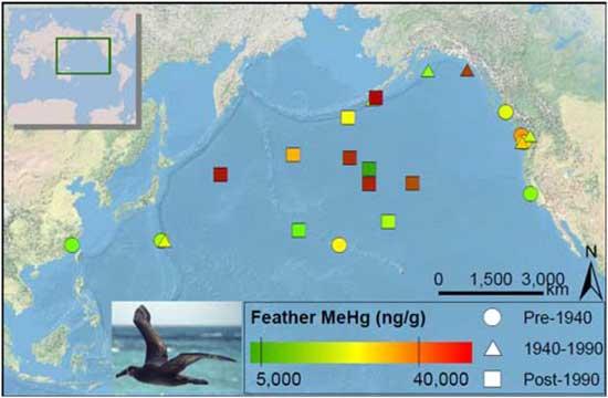 medidas de mercurio en el Océano Pacífico