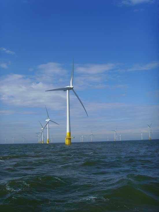 parque eólico marino UK 3