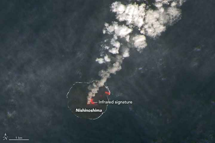 penachos volcánicos en la isla Nishinoshima