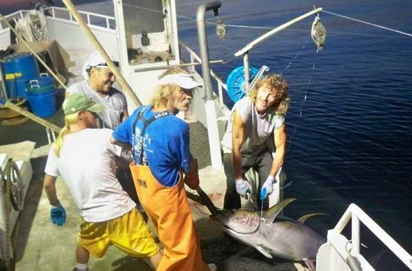 pesca de pez espada con palangre