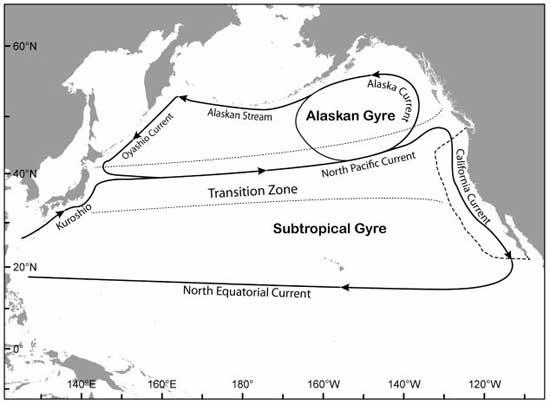corrientes dominantes en el Océano Pacífico