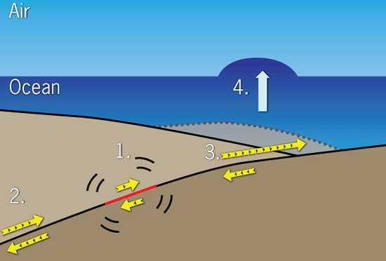 doble moviento oeste este falla terremoto de Japón 2011