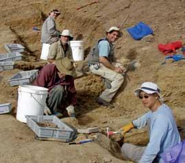 equipo de escavación de Emu Bay, Australia