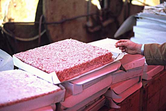 tortas de krill