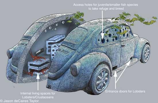VW escarabajo sumergido en Cacún, sección