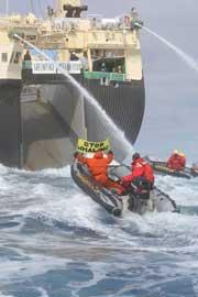 activistas de Greenpeace acosan ballenero japonés