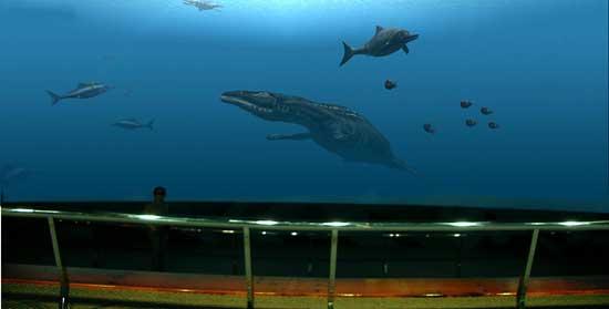 acuarium 5d en Taiwan, reptiles marinos