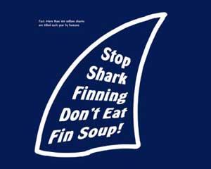 alto al aleteo de tiburones