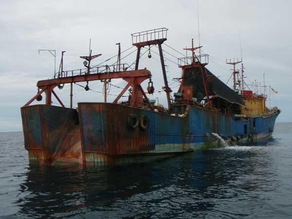 buque pesquero ilegal
