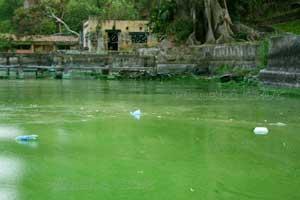 contaminación lago Amatitlán