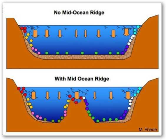 diagrama fondo océano