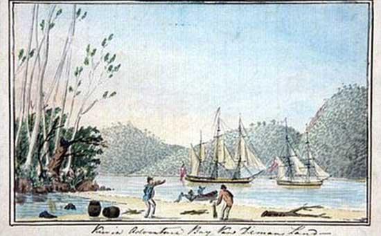 Página diario de pesca de James Cook