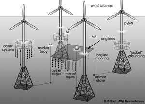 gráfico granja marina y aerogeneradores
