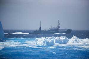 hielos alrededor del Shonan Maru 2