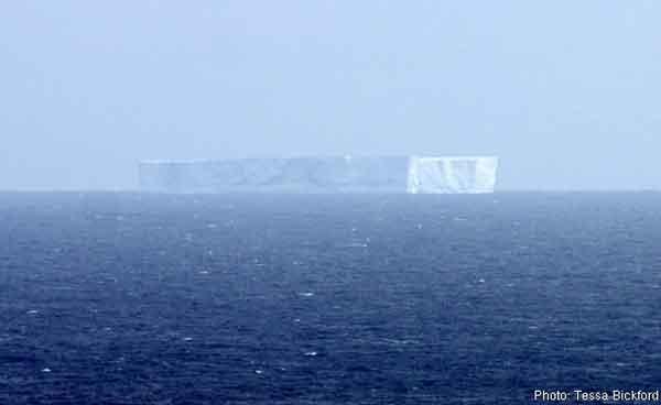 iceberg Isla Macquarie