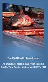 informe juveniles atún Mediterráneo